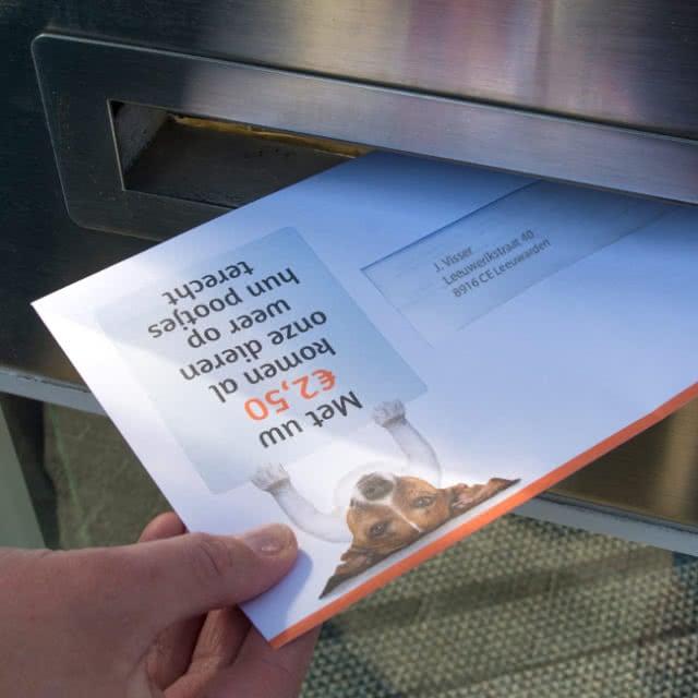 Direct mailing dierenopvang de Wissel